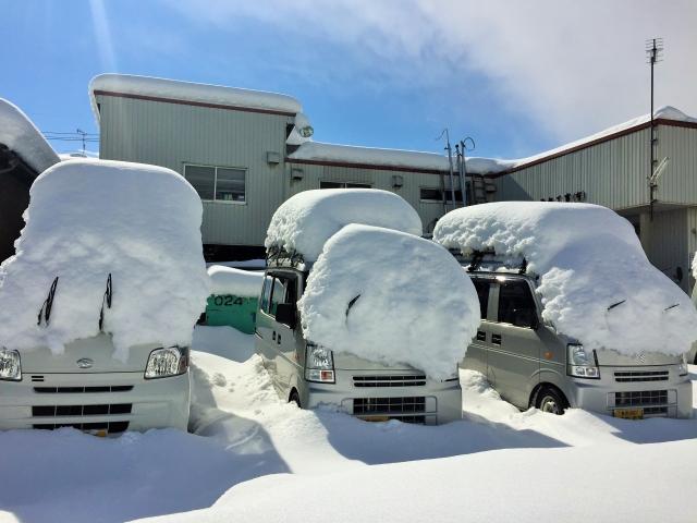 駐車場の車に積もった雪